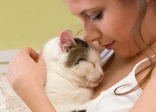 猫喜欢主人有什么表现-猫咪恨主人的十种表现是怎样的?