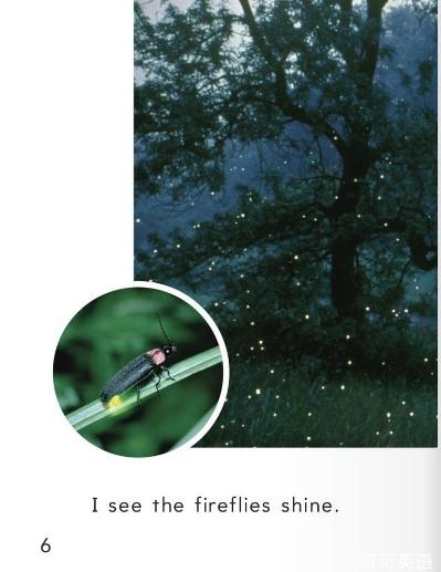 少儿英语学单词一年级 第25课 萤火虫 Fireflies