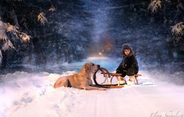 她拍摄的儿子和动物的照片十分引人入胜