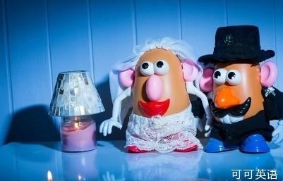 爸爸为儿子精心拍摄土豆人偶婚纱照图片
