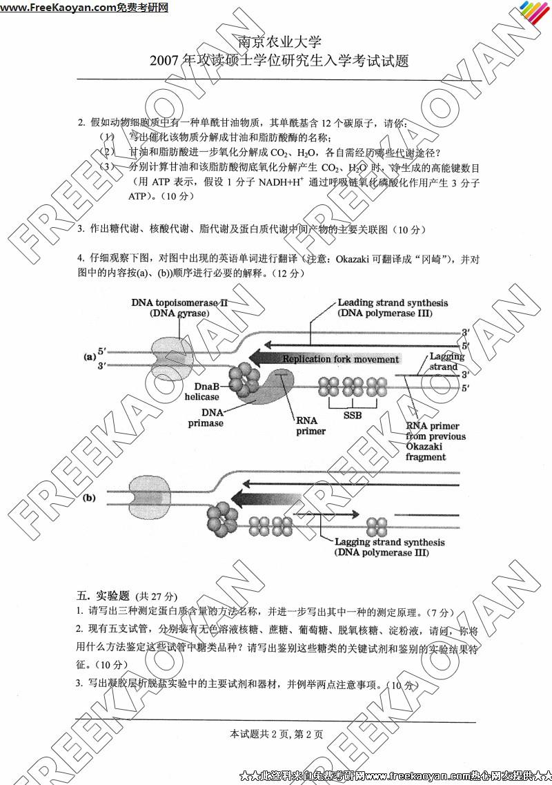 南京农业大学2007年生物化学专业课考研真题试卷