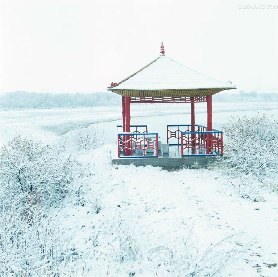 白雪覆盖大地
