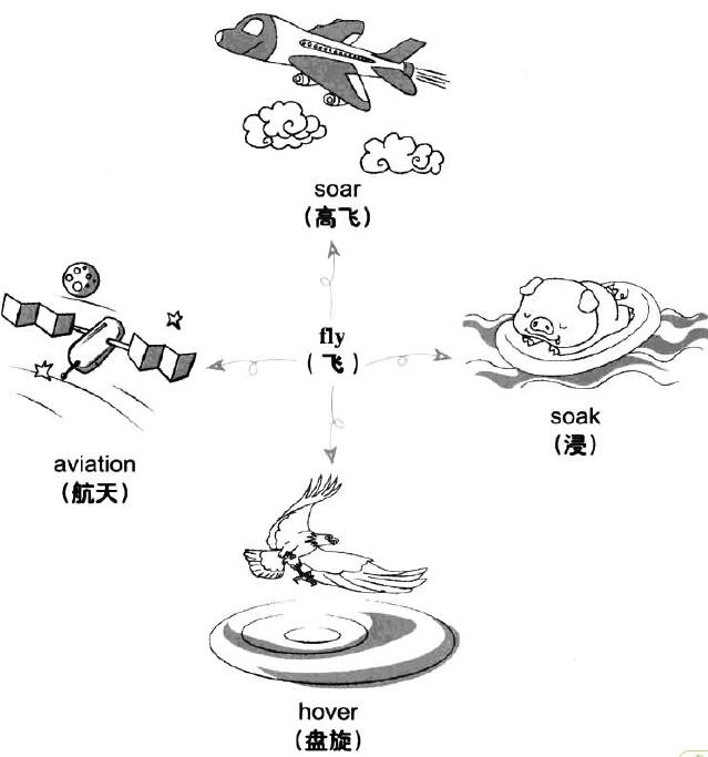 海鸥简笔画步骤 飞翔