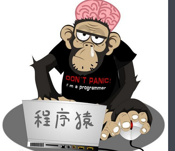 天才不等于程序猿