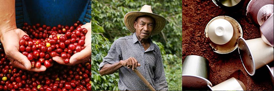 新奇事件簿(翻译+字幕+讲解+试题):咖啡公司提高可持续性.jpg