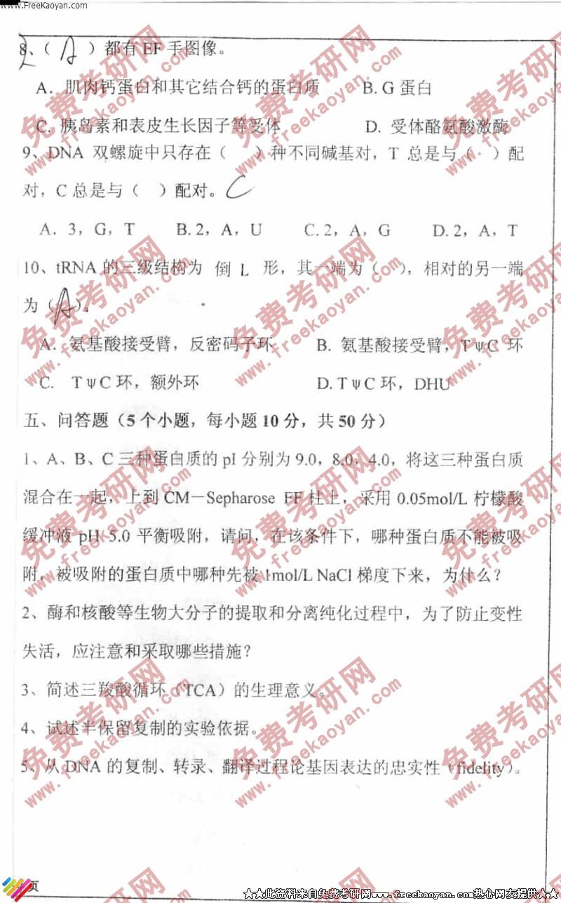 四川大学2005年生物化学考研真题试卷