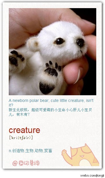 囧记单词:creature 生物 动物