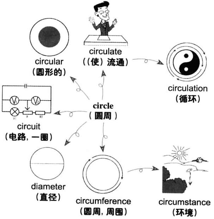 圆周,圆形物,派系,循环