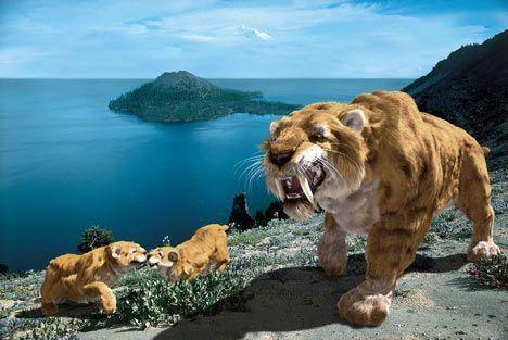 物种灭绝的影响