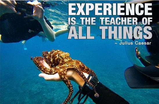 经验就是最好的老师