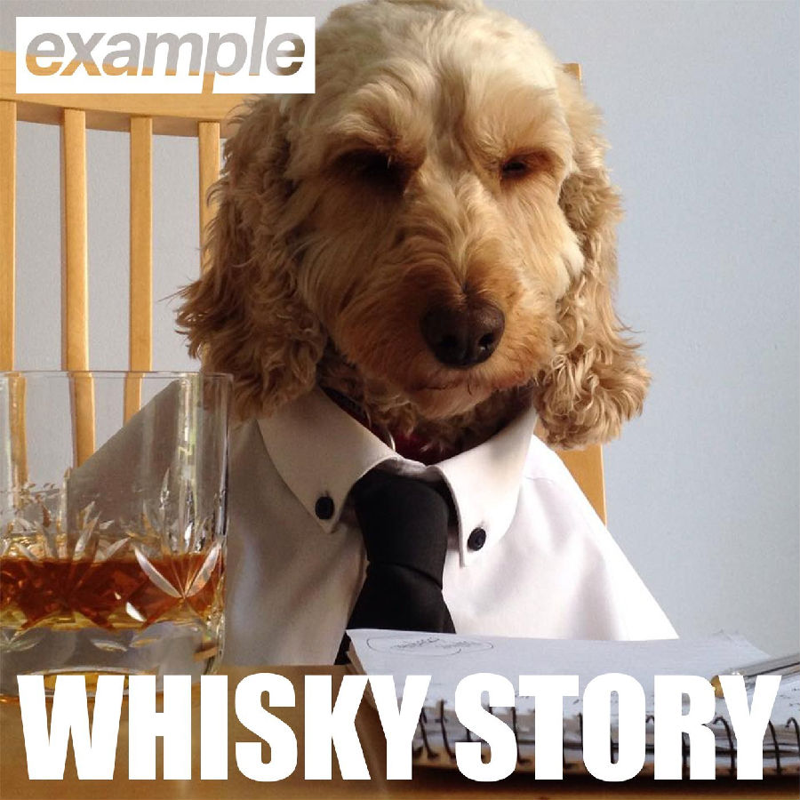 Example-Whisky-Story-2015-1400x1400.png