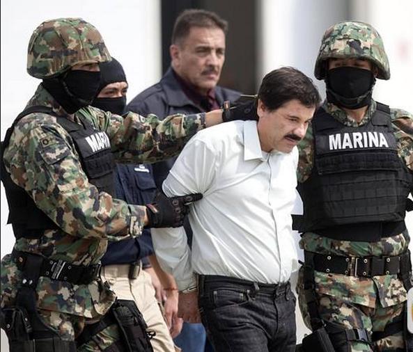 墨西哥毒枭.png