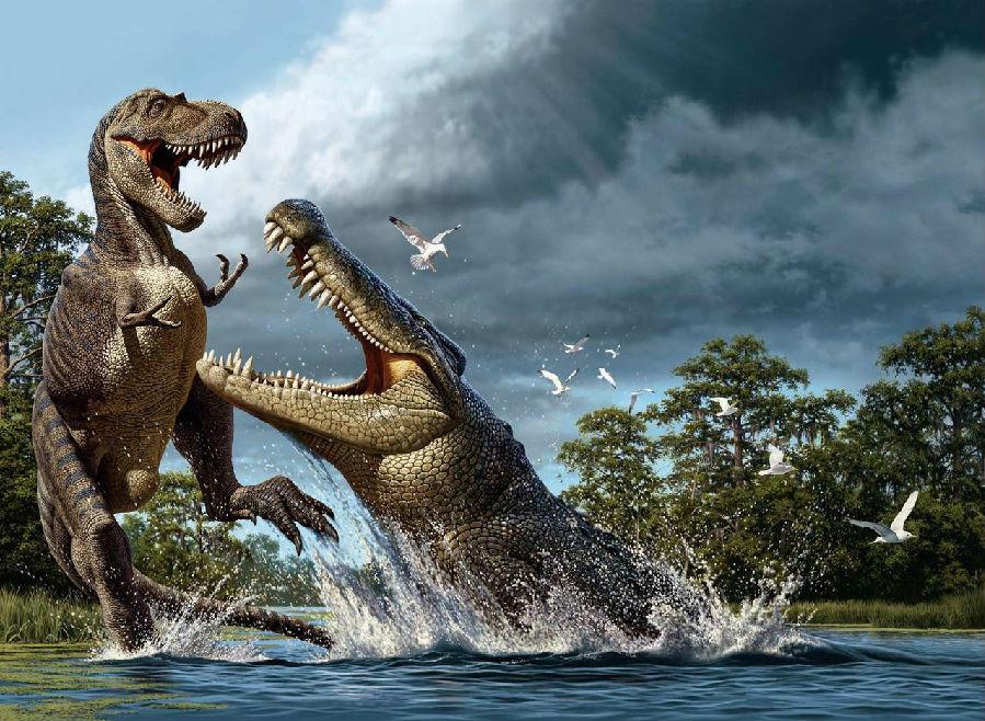恐龙蛋.jpg