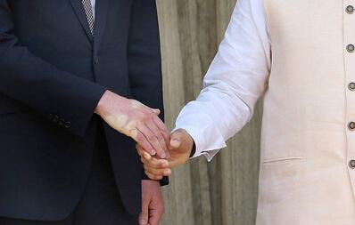威廉王子与莫迪握手后竟留下掌印 画面尴尬图片