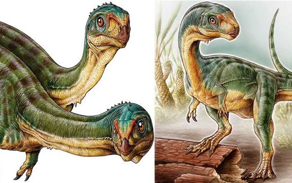 史前生物的10大怪异特征(下)
