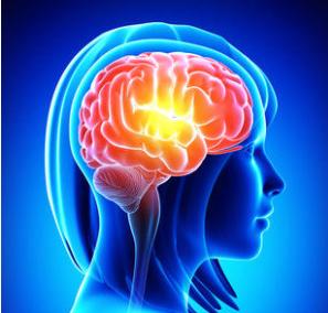 怀孕对大脑的影响
