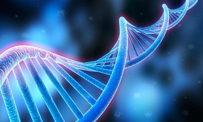 关于DNA复制
