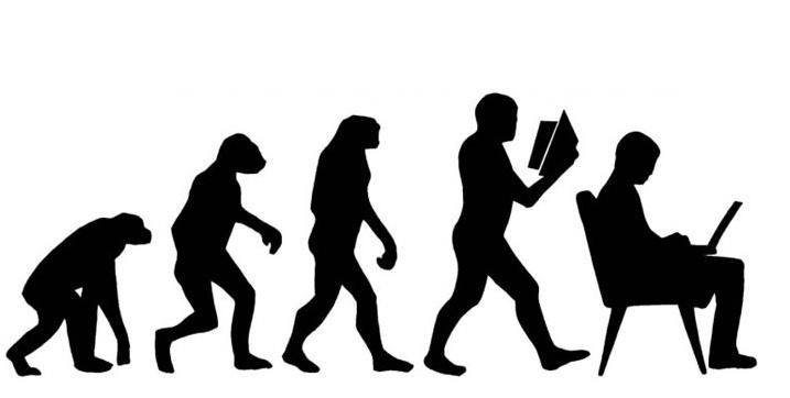 身体部位的进化
