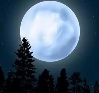 21世纪超级月亮今晚亮相.jpg