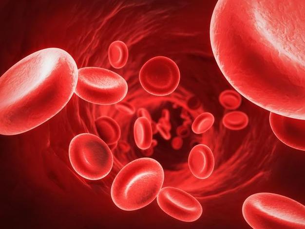 身体老化对细胞的影响