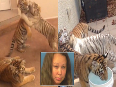 The child's mother was arrested for raising a beast.jpg