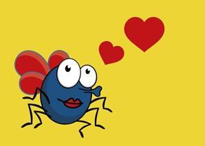 果蝇选择异性伴侣
