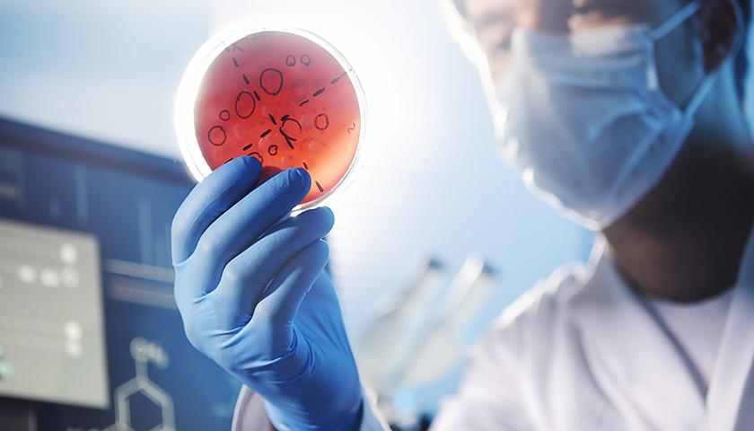 """世卫组织呼吁对抗""""超级细菌""""新疗法.jpg"""
