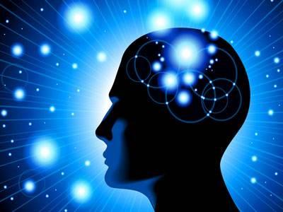 大脑对睡眠的反应