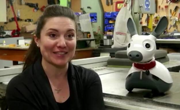 机器人宠物为残疾人和老年人提供精神慰藉