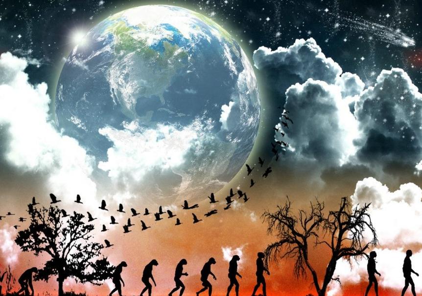 人类对生态系统的责任