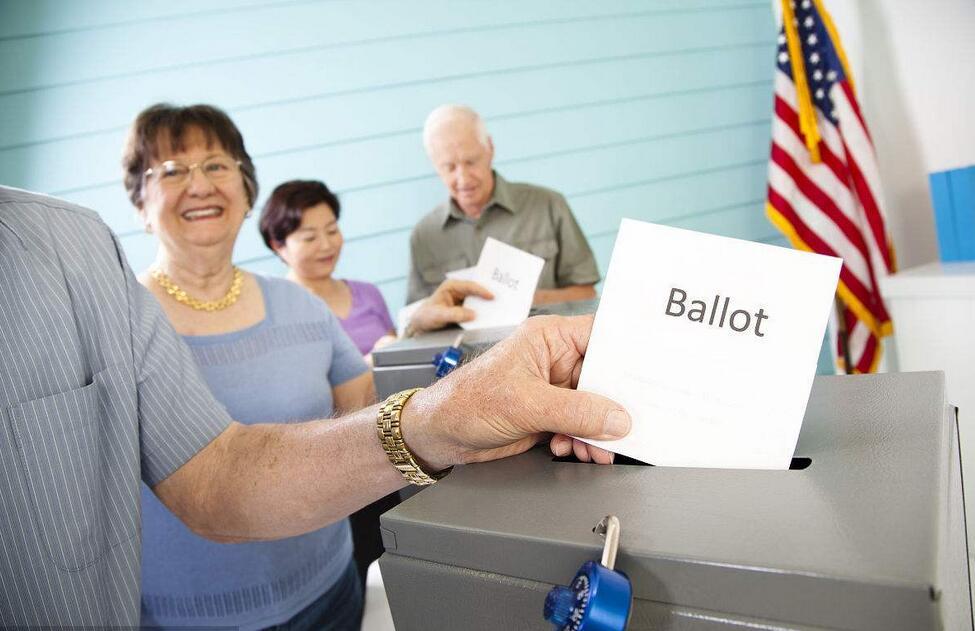青年与民主:早投票,多选举1.jpg