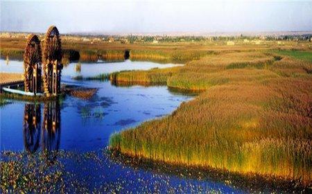 湿地.jpg