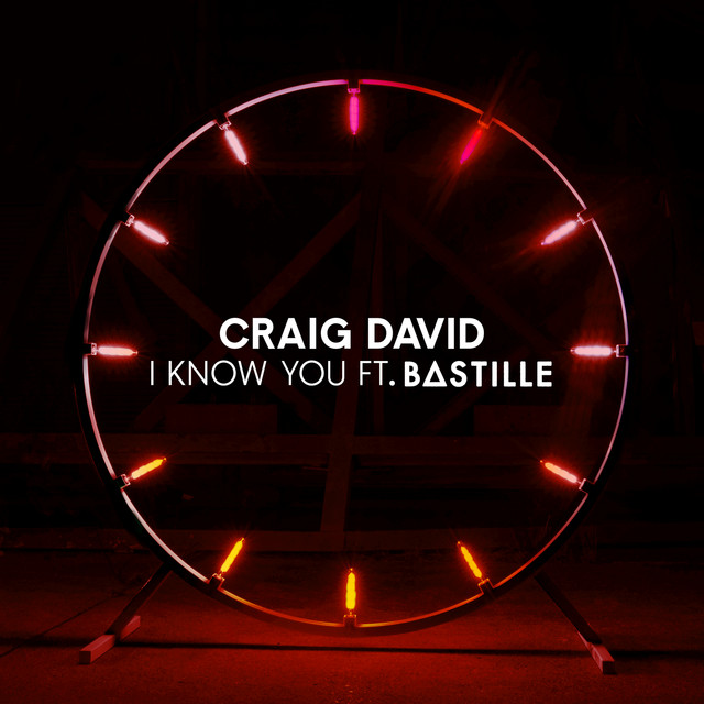 Craig-David-I-Know-You.jpg
