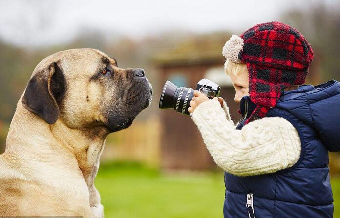 相机记录野生动物私人时刻.jpg