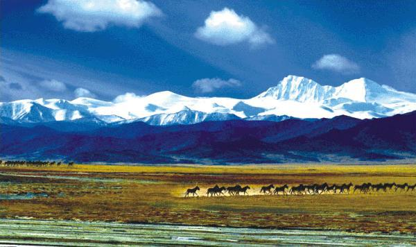 三江源国家公园将于2020年正式设立