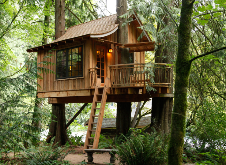 有意思的树屋