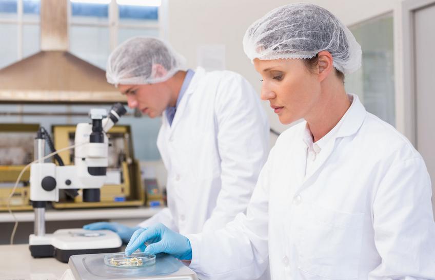 人类卵子首次在实验室培育成熟.png