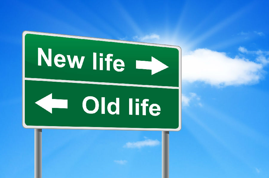 My New Life 我的新生活