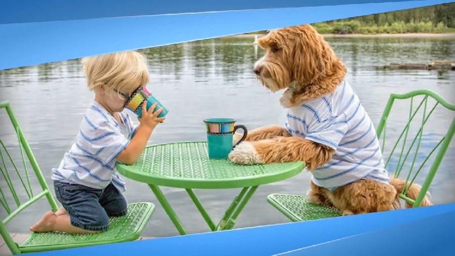 有一只狗狗陪你长大是种什么体验?