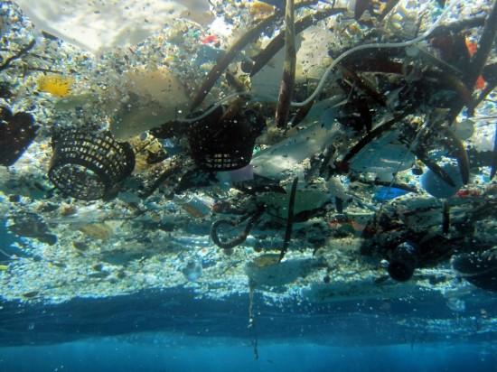 海洋中废弃塑料的出处