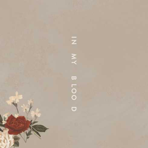 Shawn-Mendes-In-My-Blood.jpg