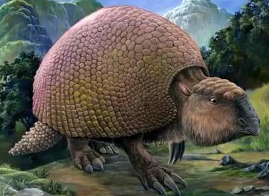 5种冰河时代的动物