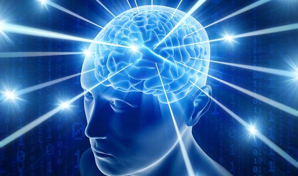 了解意识的根源