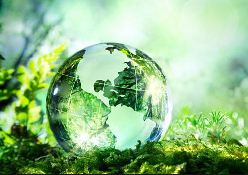 我们有责任去维系整个生态环境