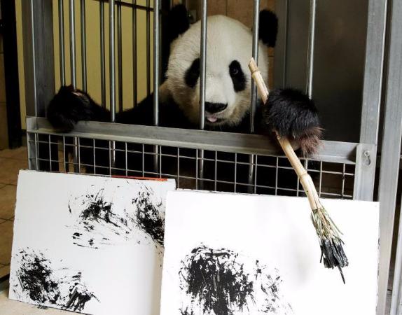 大熊猫阳阳在奥地利动物园内挥毫作画