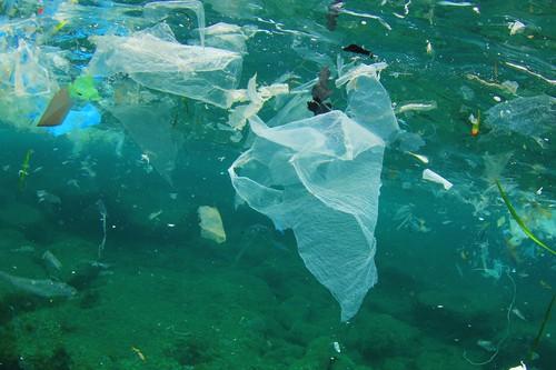经济学人: 清理海洋垃圾 (1)