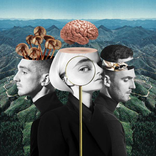 capa-whatislove-cleanbandit-600x600.png