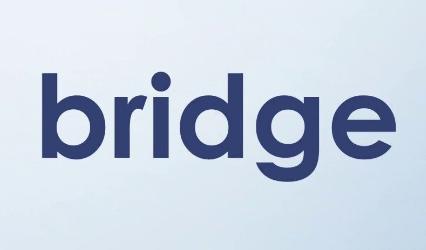 bridge的不寻常用法