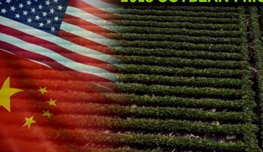 美国中部农民迫切期待中美会谈取得成果.png