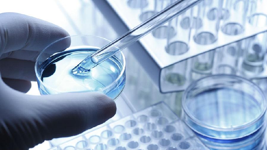 我国科学家找到肿瘤免疫治疗潜在新途径